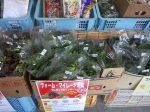 鍋島新鮮市場②.JPG
