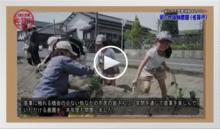 動画で見よう!~街なかで農業を体験しよう!
