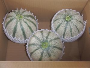 melon_11.JPG