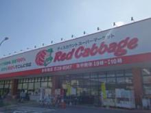レッドキャベツ 多布施店